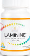laminine lifepharm global