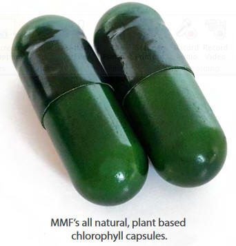 engage global micro daily 2 capsules